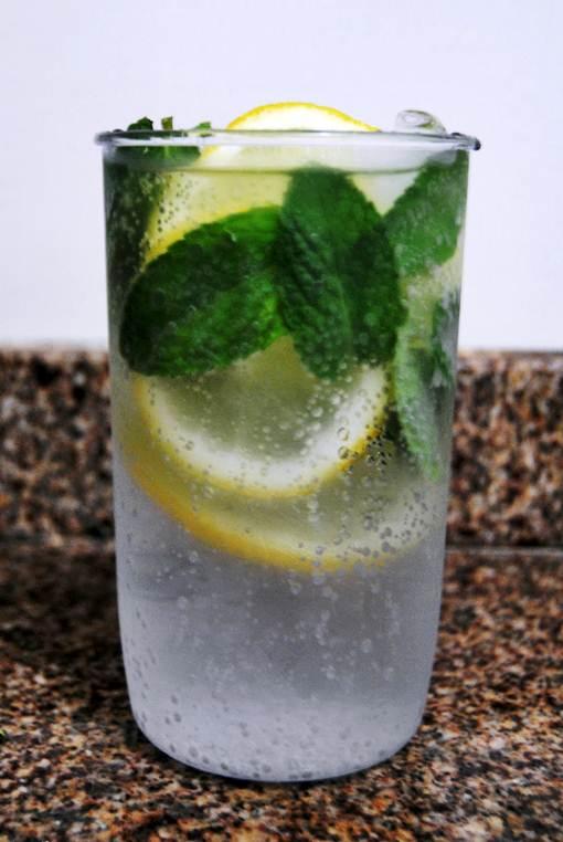 Para um sabor a mais alguns adeptos às ervas finas substituem o gelo por elas