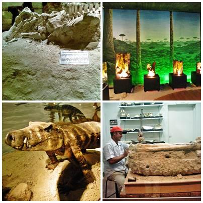 Algumas peças expostas no museu e arqueólogo trabalhando em um fóssil