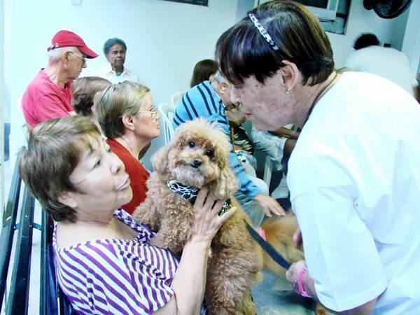 Algumas clínicas geriátricas realizam terapia com animais