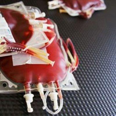 Bolsa de sangue após a coleta - Hemocentro de Uberaba