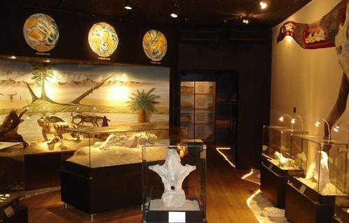 Vista parcial do interior do Museu dos Dinossauros em Peirópolis - Foto: Ângela Goés